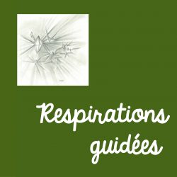 Respirations guidées